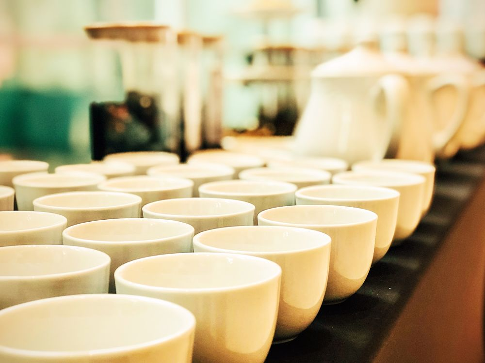 iniciar un negocio de té